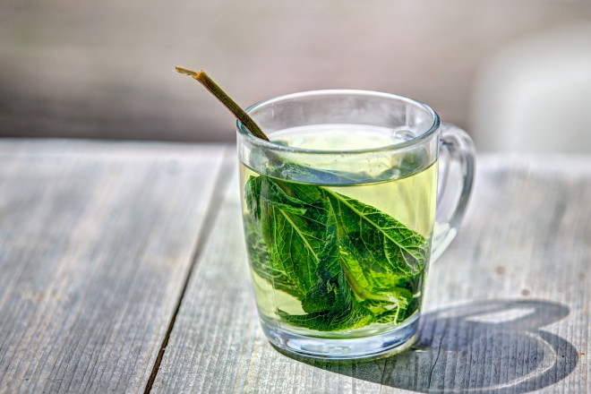 Green tea: boost senior immunity